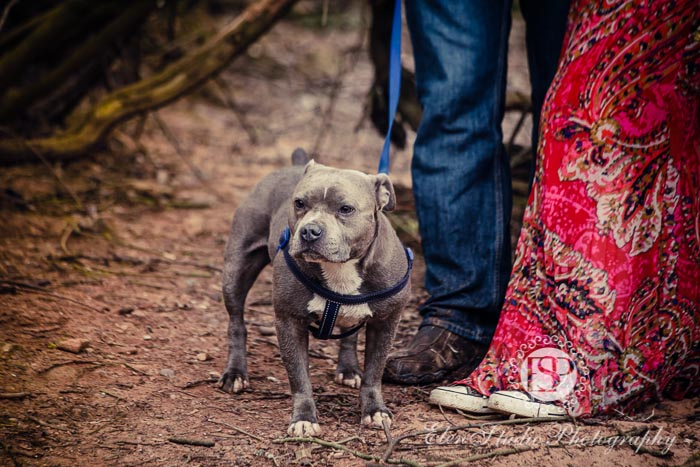 Foremark-Reservoir-Engagement-photos-with-dog-J&J-Elen-studio-photography--06